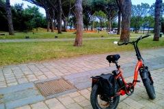Il verde del parco Virgiliano