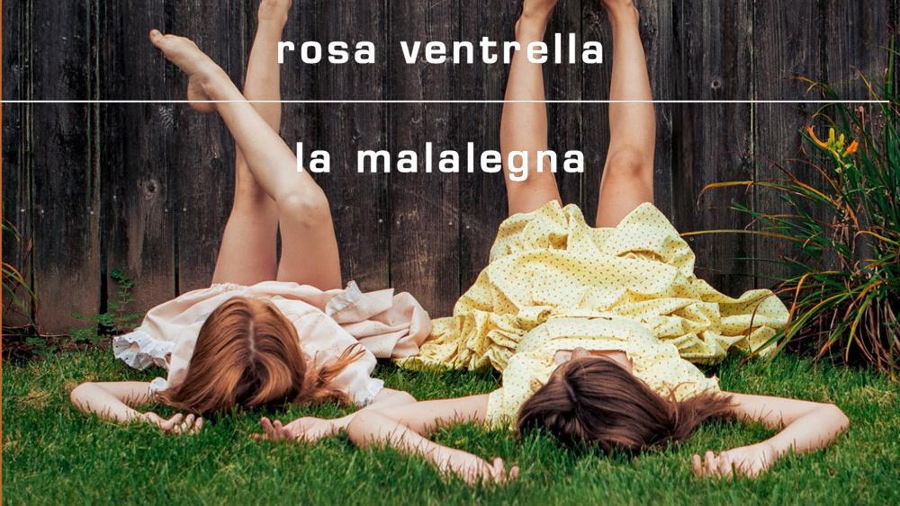 La malalegna, l'ultimo romanzo di Rosa Ventrella
